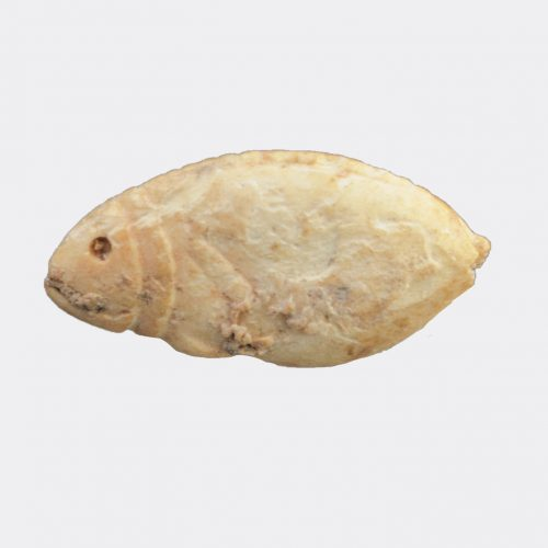 Egyptian Antiquities - Egyptian Roman or Coptic period fish amulet