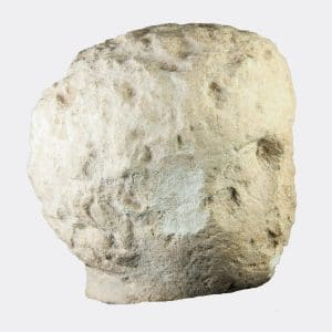 Cypriot Antiquities - Cypriot Hellenistic limestone head