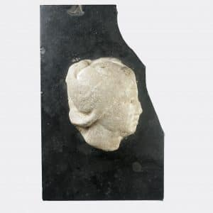 Roman Antiquities - Roman marble head fragment