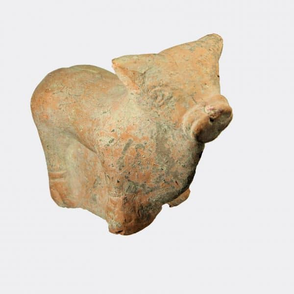 Greek Antiquities - Greek Hellenistic pottery bull
