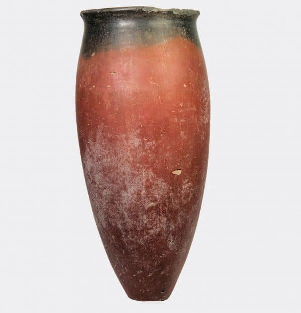 Egyptian Antiquities - Egyptian Naqada black top vase